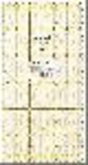 Prym/Omnigrid lineaal 15 x 30 cm